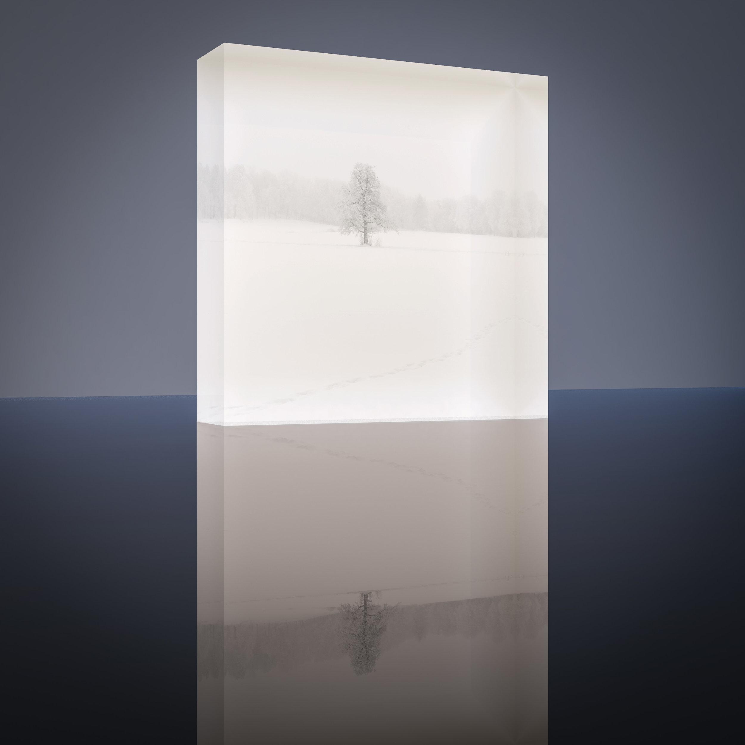 Tammi   Ruissalo, Turku, Finland Taidetuloste Akryylilasilla #1/30  Size: 10 L x 10 K x 3 S [cm] #1/30