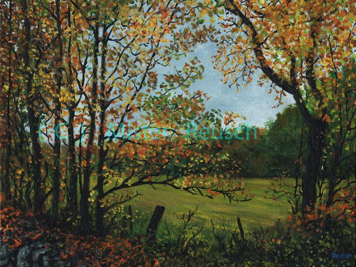 """""""Overcast Autumn Field"""""""
