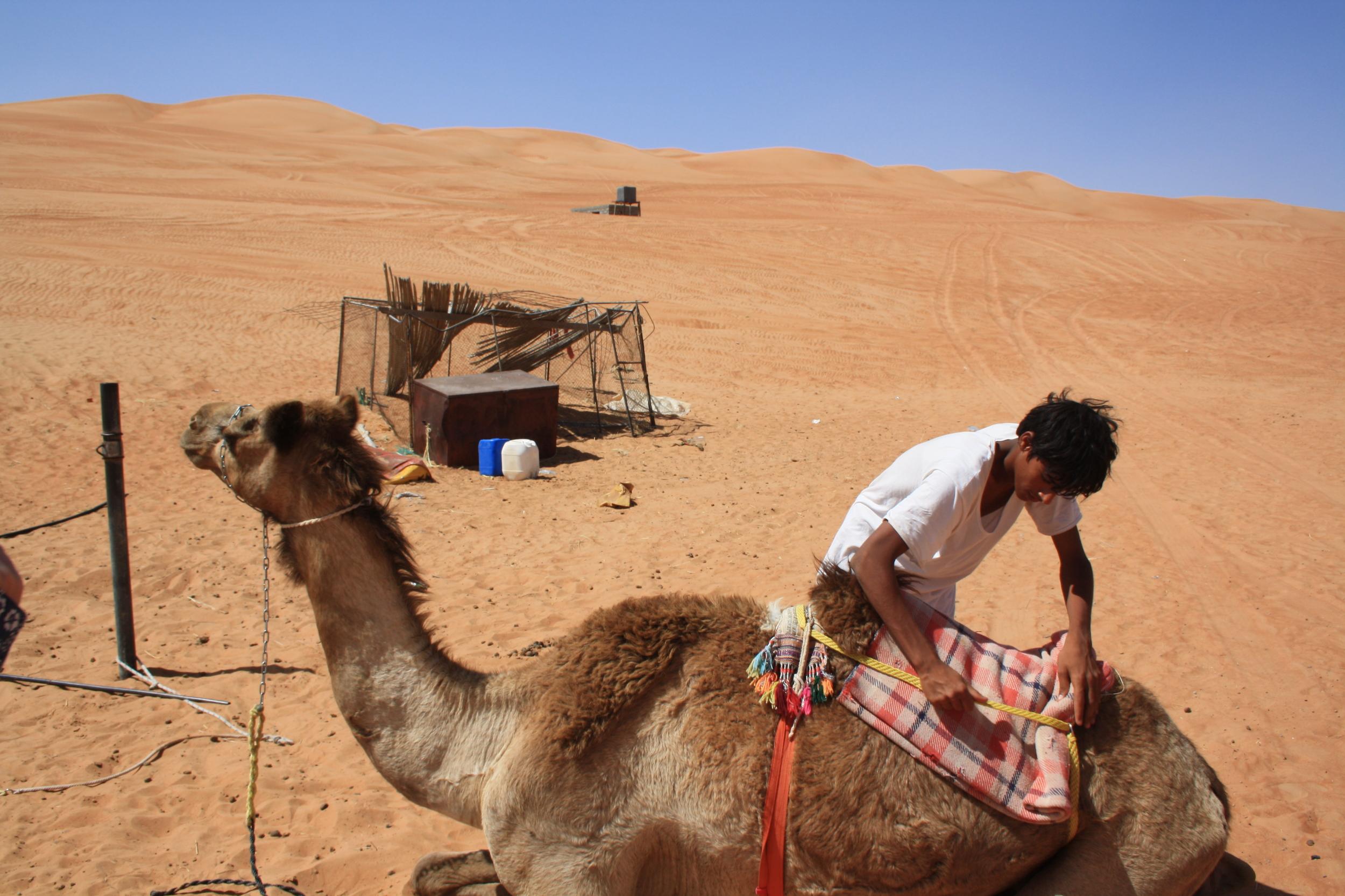 En beduin og hans kamel i Wahiba Sands. Foto: Kjersti S. Macdonald Aursnes