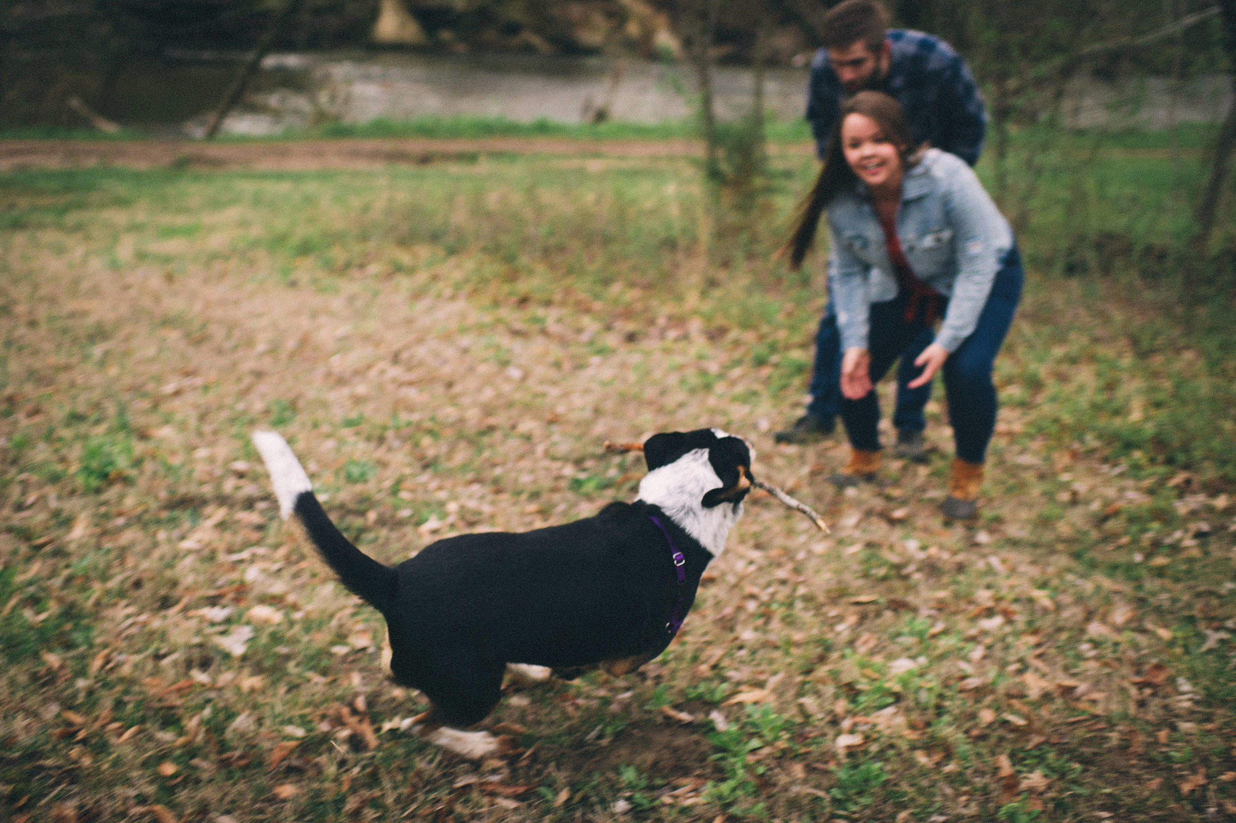 Maggie + Corey Adventurous Engagement Session- Sarah Katherine Davis Photography - Cherokee Park Hike - Louisville Kentucky - Playing with Dogs