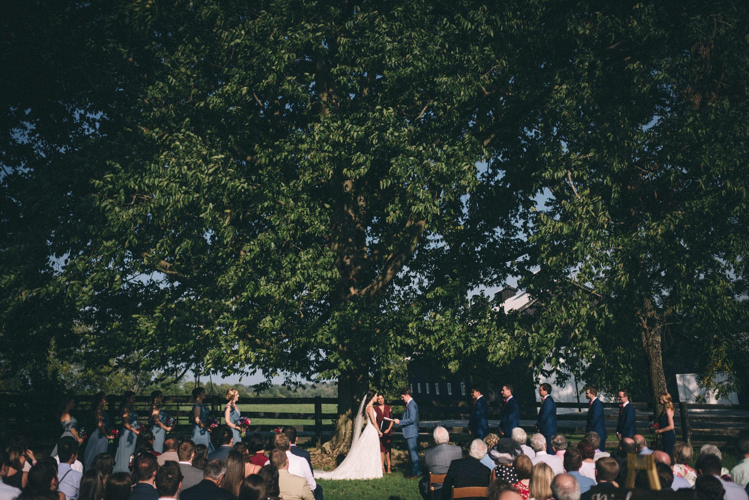 Louisville-Kentucky-Wedding-and-Elopement-Photographer-Sarah-Katherine-Davis-Photography-Summer-Jewel-Toned-Wedding-Chineese-Tea-Ceremony-Warrenwood-Manor-Danville-578.jpg