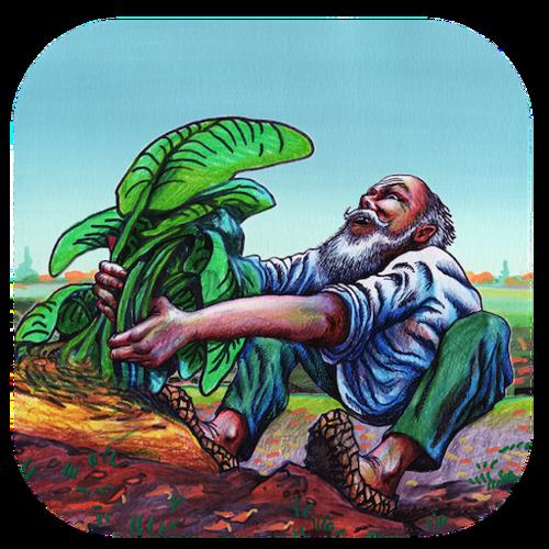 The Giant Turnip -