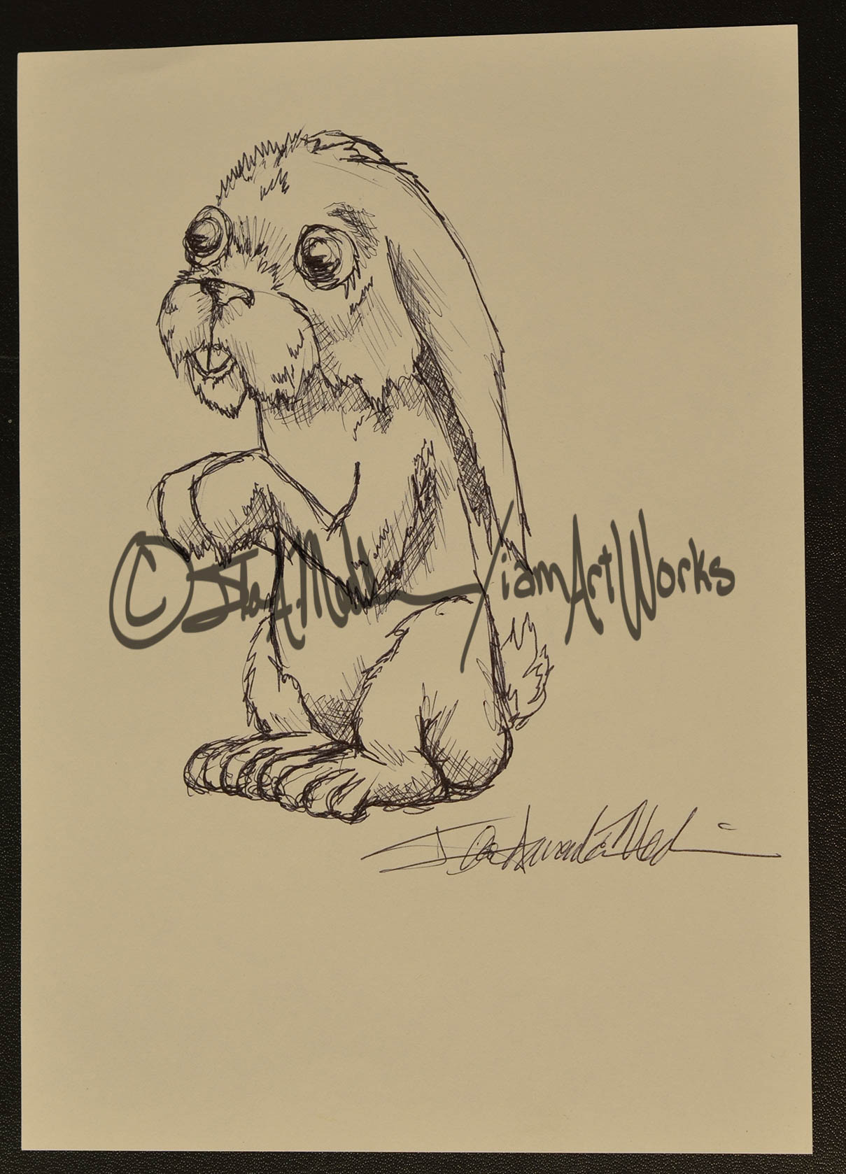 pen bunny.jpg