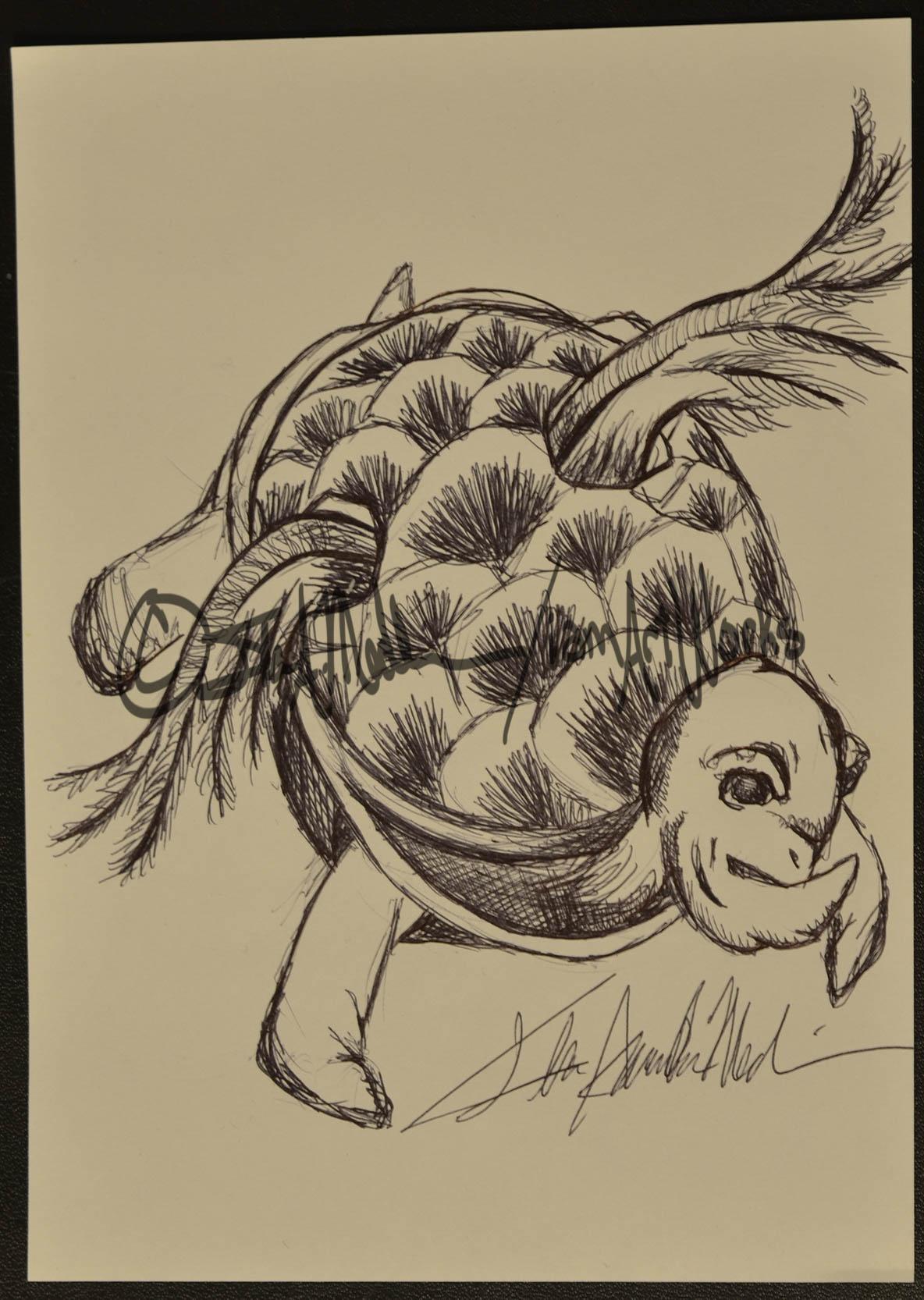 pen soaring tortoise.jpg