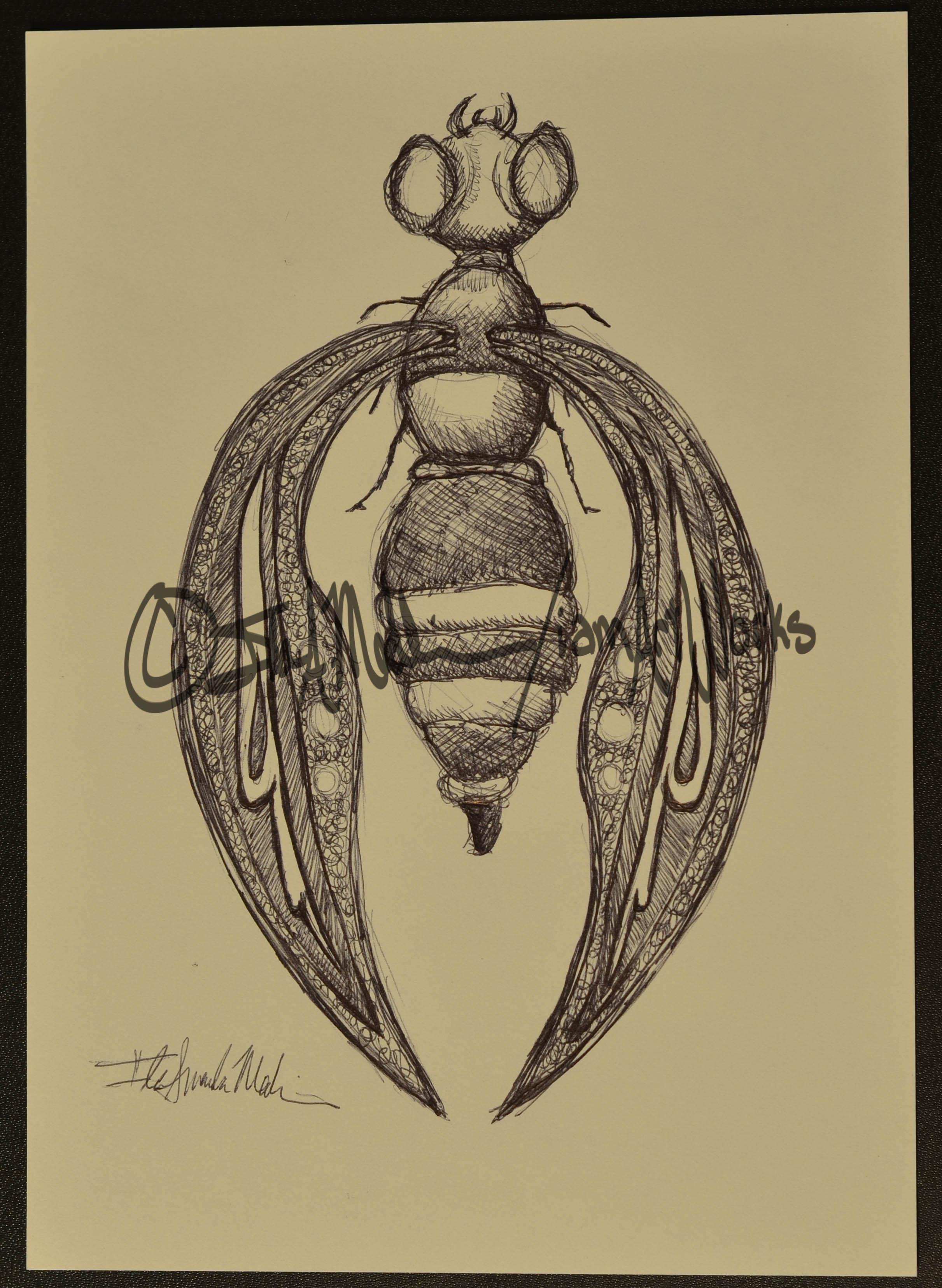 pen waspbee.jpg