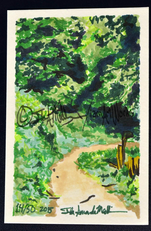 markercard dark path.jpg