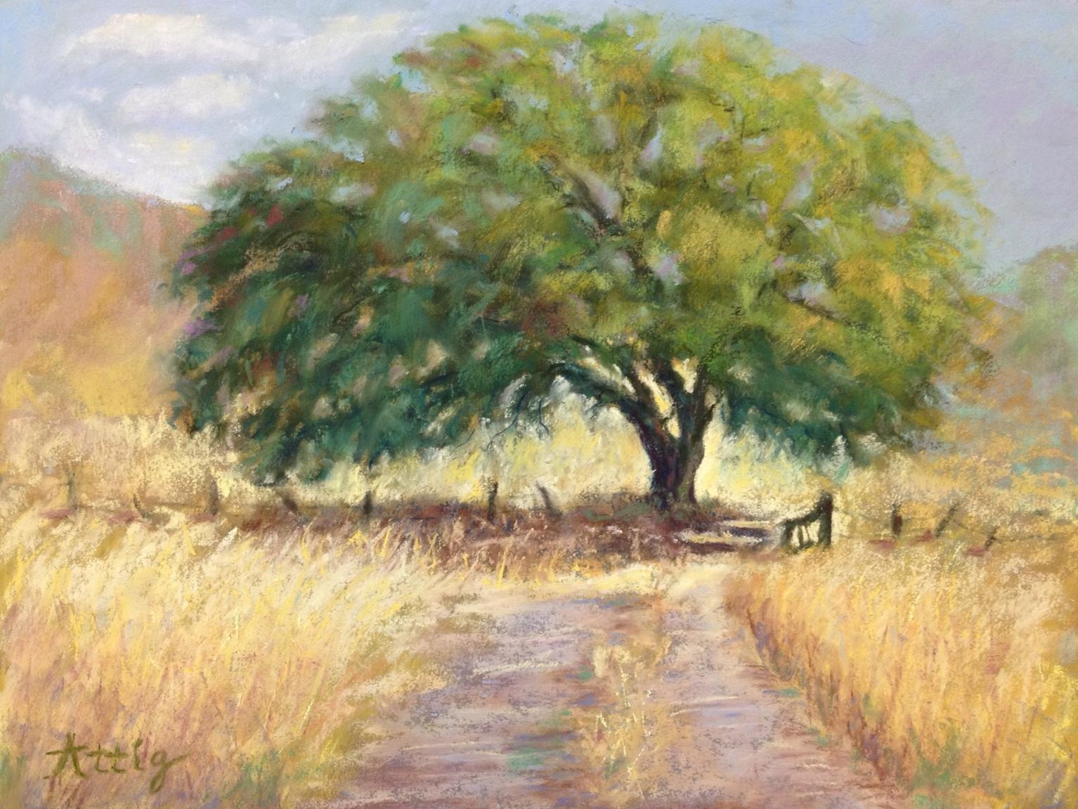 """Ruiz Field Giant Oak"" 9"" x 12"" $495"