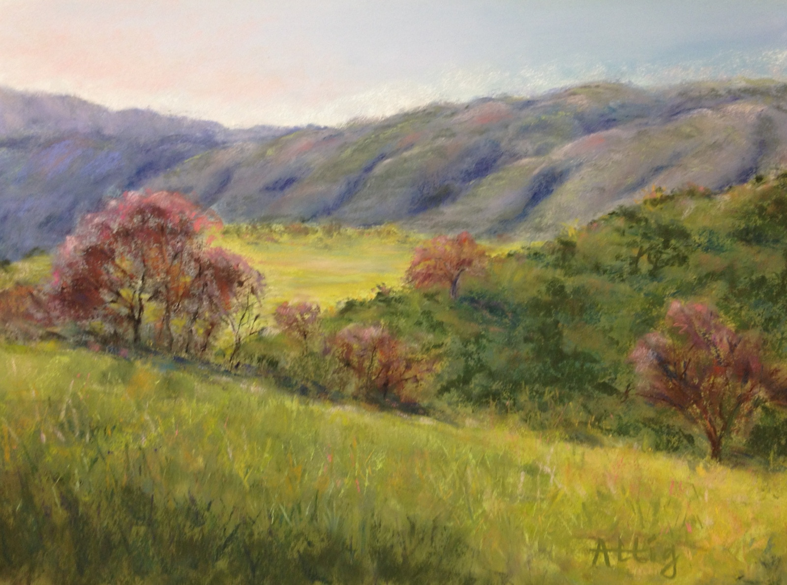 """Springtime Hills, Blue Moon Ranch"" ""12 x 16"" $660"