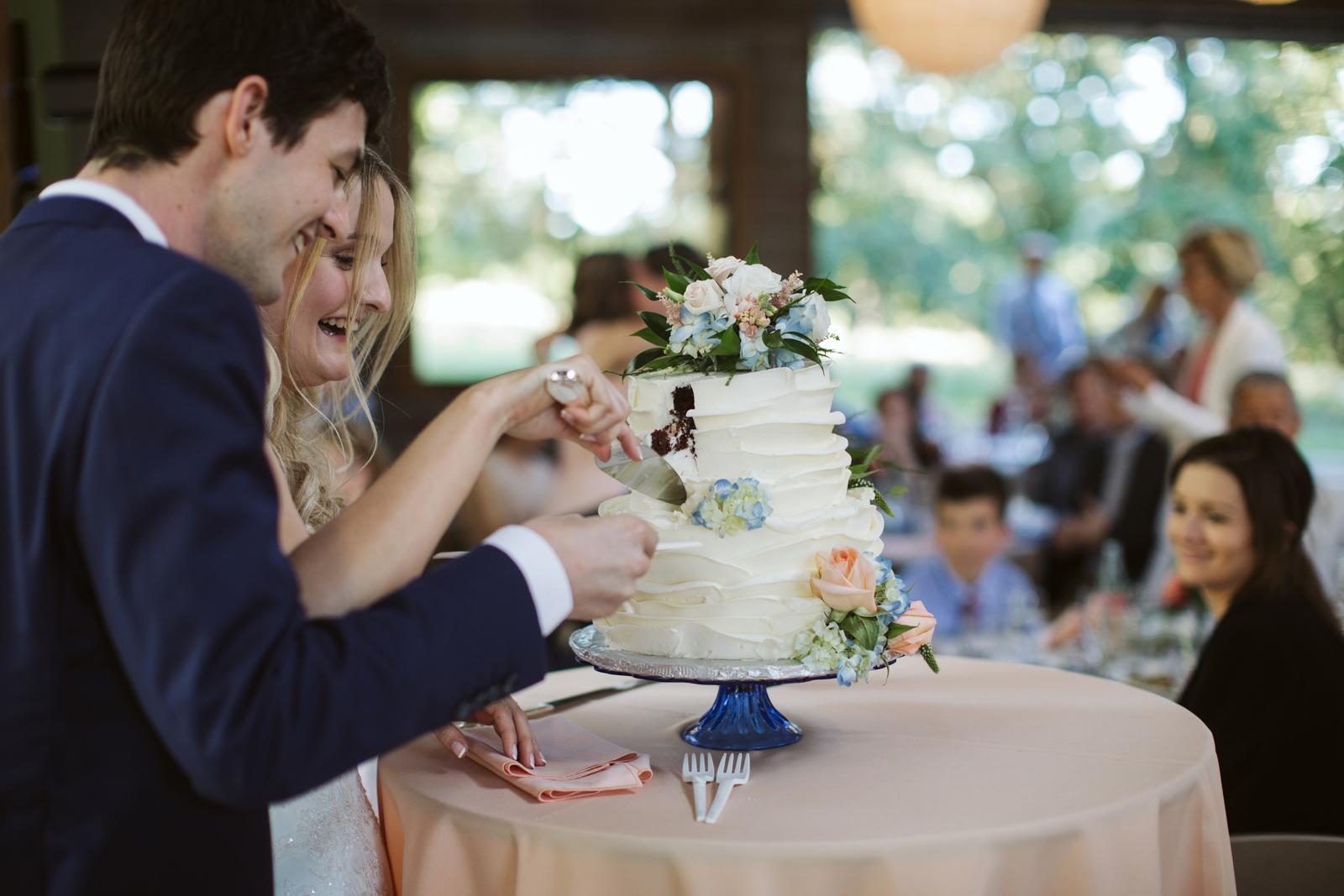 104-daronjackson-rachel-michael-wedding-mtpisgah.jpg