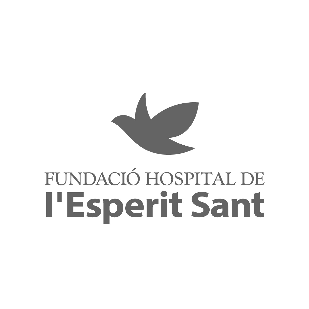 logo_F_Hospital_Esperit_Sant.png