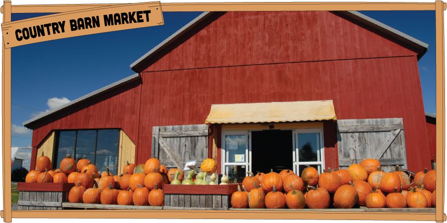 900x450countrybarnmarket14.png
