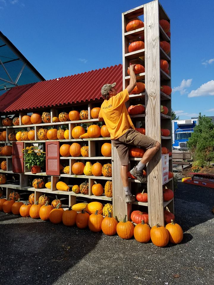 pumpkin house 2.jpg