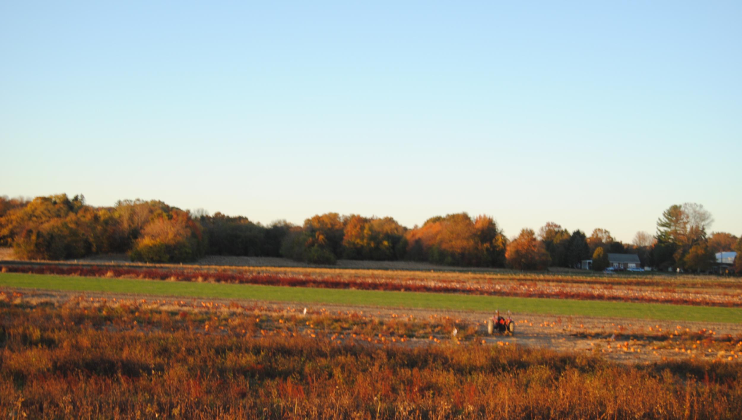 fall farm.png