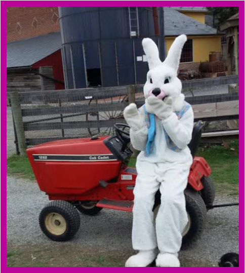 bunny tractor.png