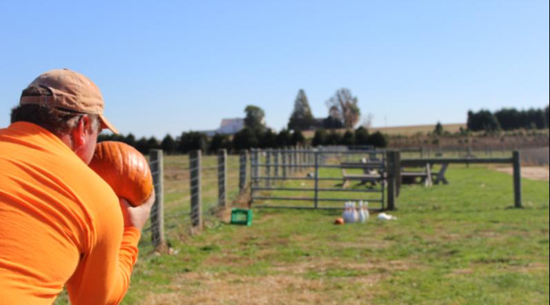 pumpkin bowling.png