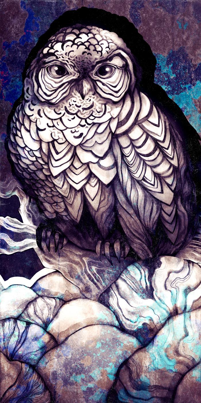 Owly2_24x48B.jpg