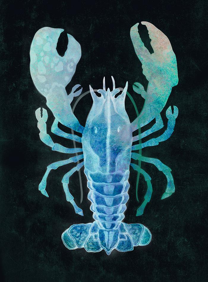 Lobster_2_invert.jpg