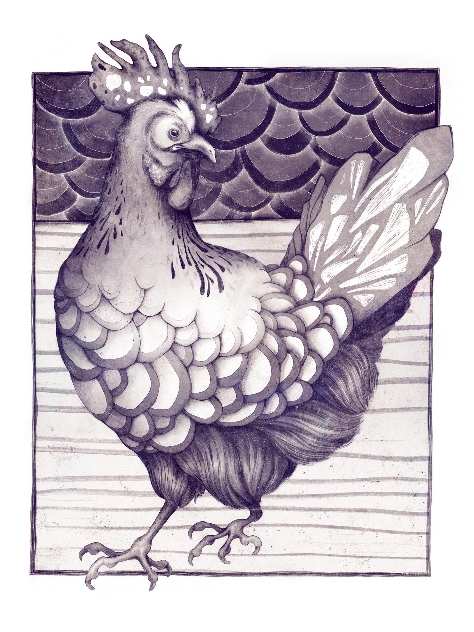 Chicken_web.jpg