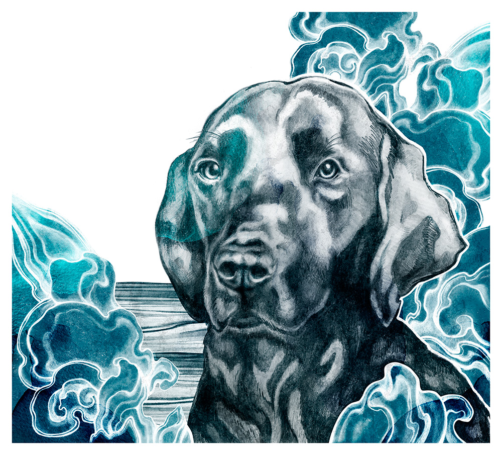 Beach Dogs - Mural Commission for Miami based agency