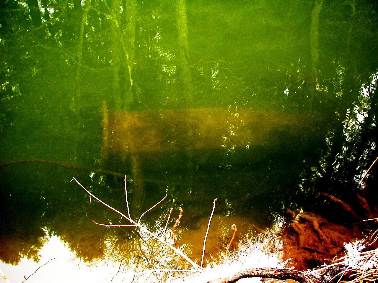 LB 170 noyée dans la Sure, 2008