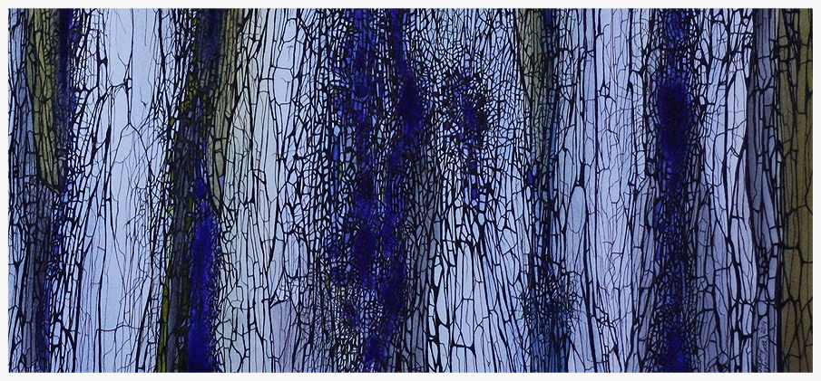 "Close up: ""Bark Cambium - Study in Blue"""