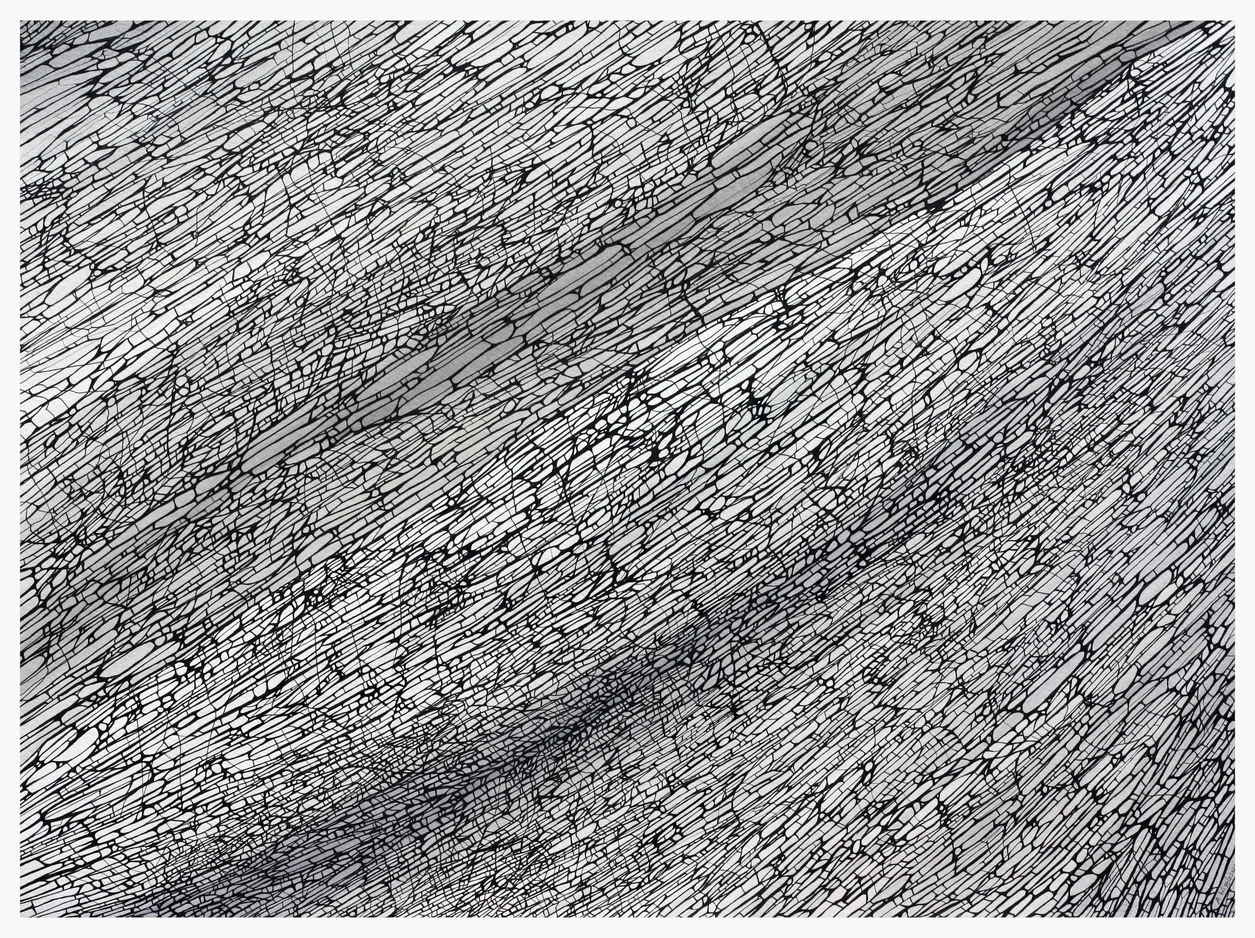 Divergence - 2   39 cm x 64 cm    © Anthony Wigglesworth - All Rights Reserved