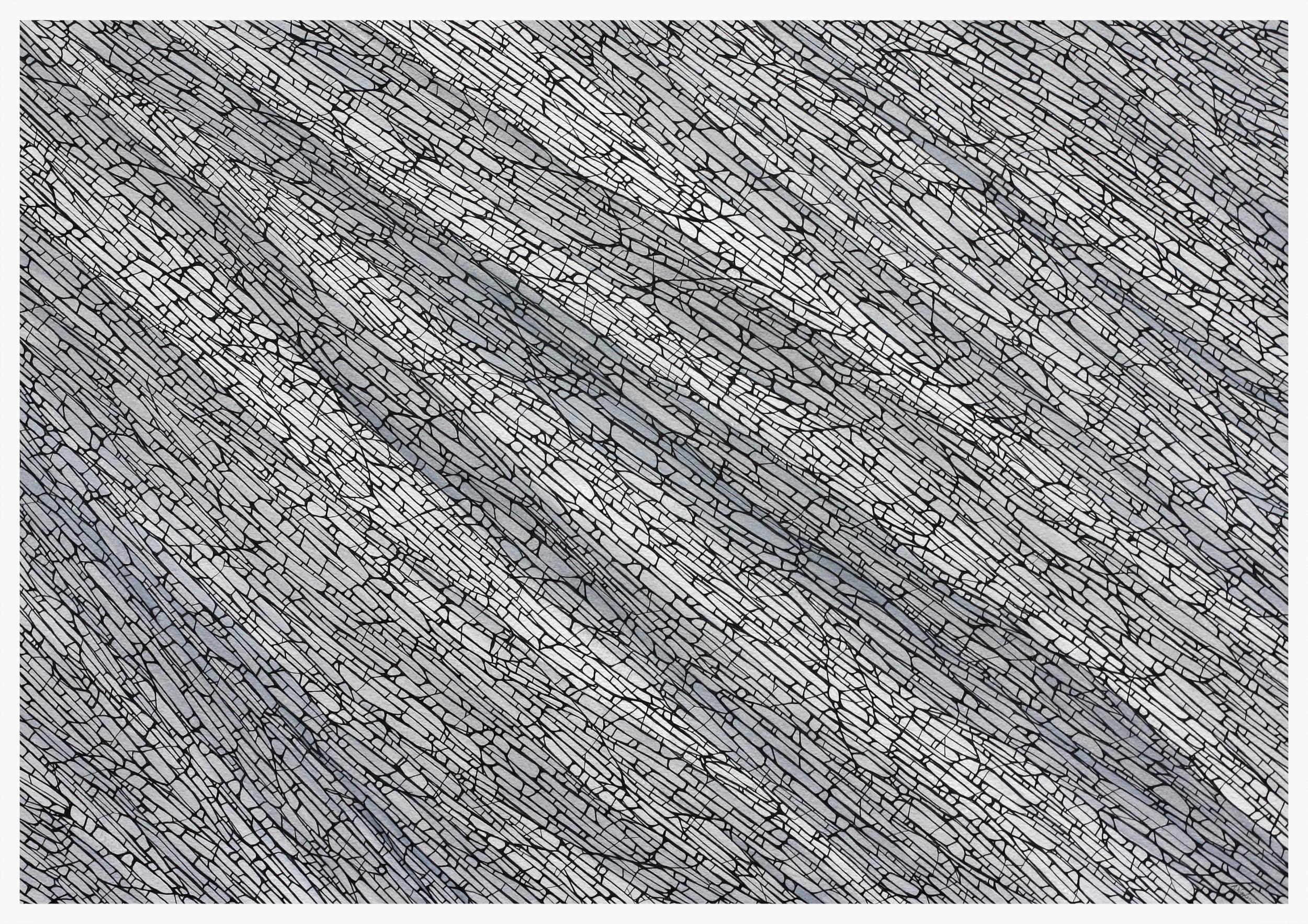 Deviation - 2,  2016, Ink on paper, 50 cm x 70 cm