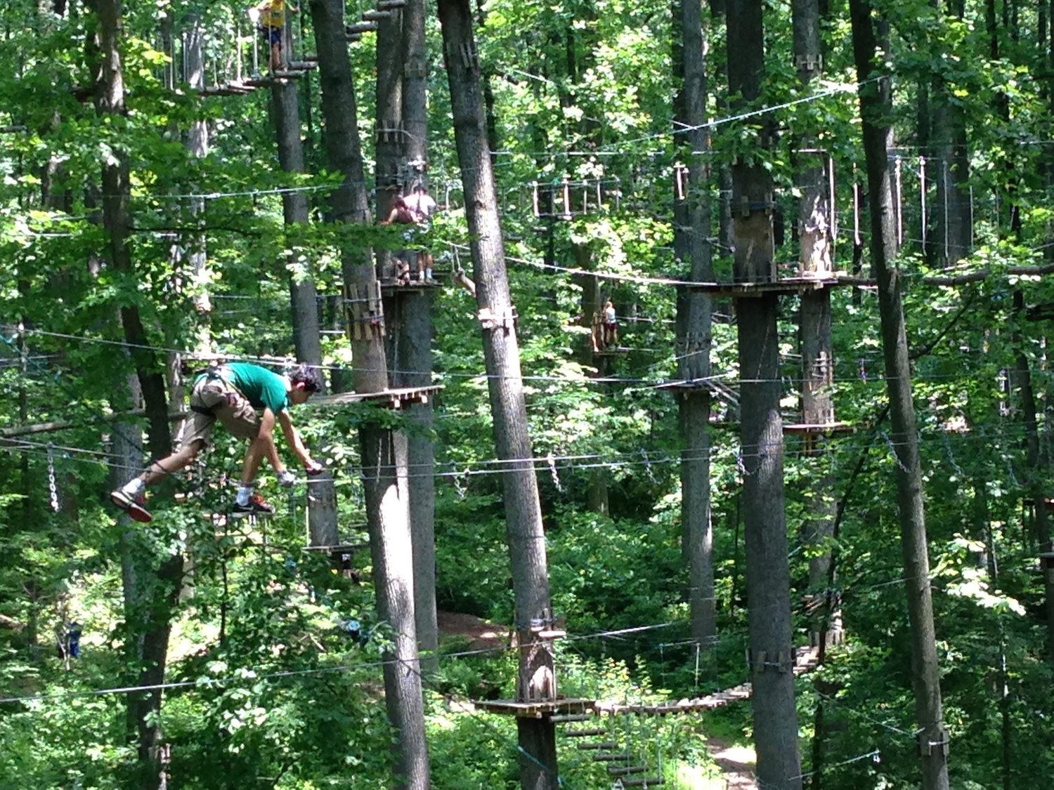 Terror Filled Fun In The Trees At Adventure Park Angelina M Lopez