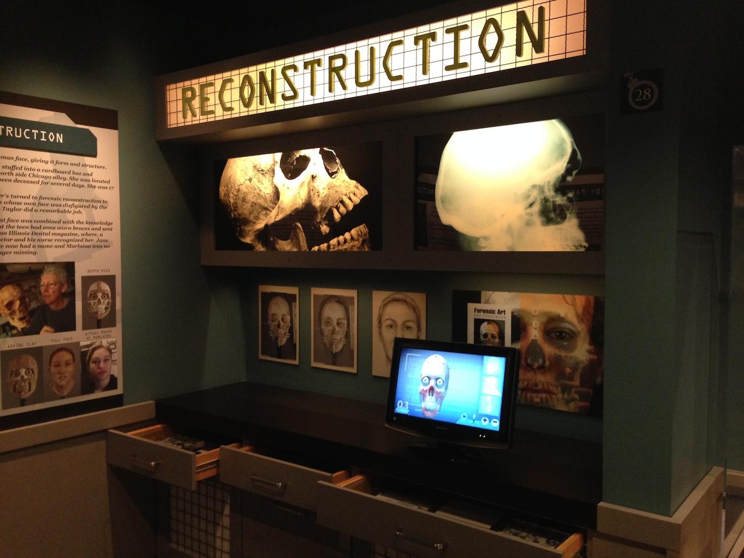 The crime-solving section allows visitors to try out modern day forensic techniques.