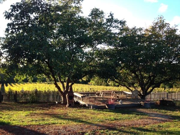 Gantz Family Vineyards