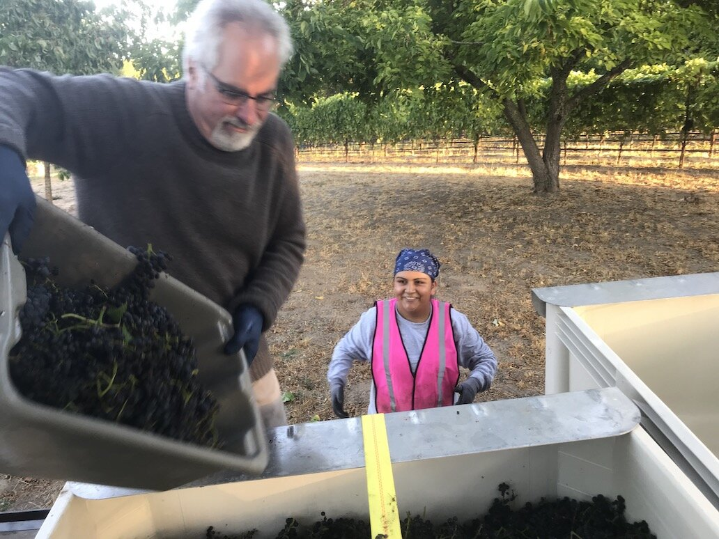 Harvest2019_GantzFamilyVineyards.jpeg