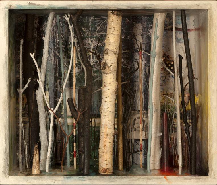 "Southbury Trees No. 10   Mixed media and found objects, 10-11/16"" x 12-5/8"" x 6-1/16"", 2013"