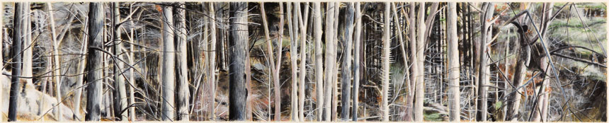 """Southbury Trees No. 12   Ink transfer, watercolor and gouache on board, 5-7/8"""" x 29-3/8"""", 2015"""