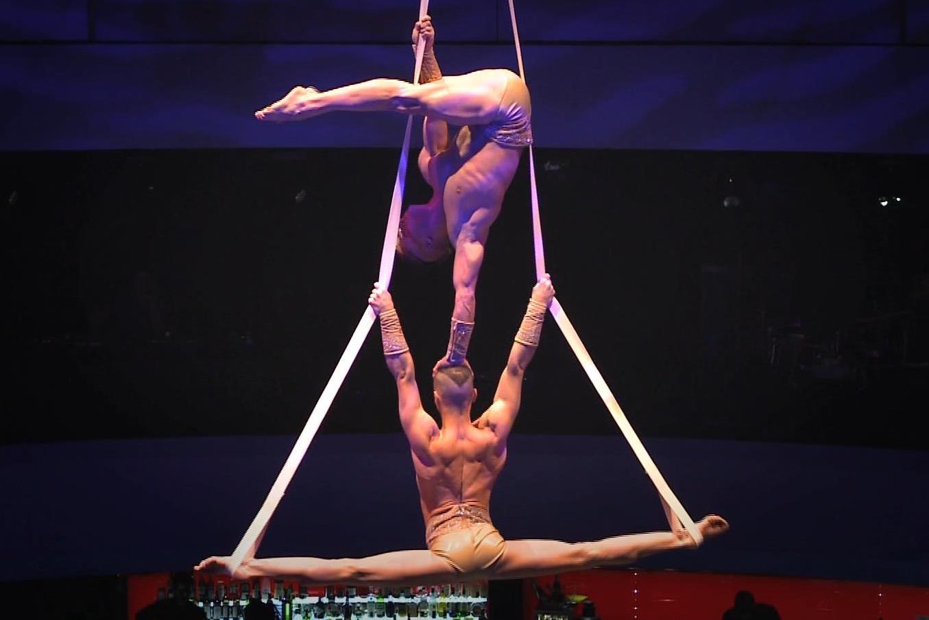 TJ Brothers, 'Aerial straps 5'.jpg