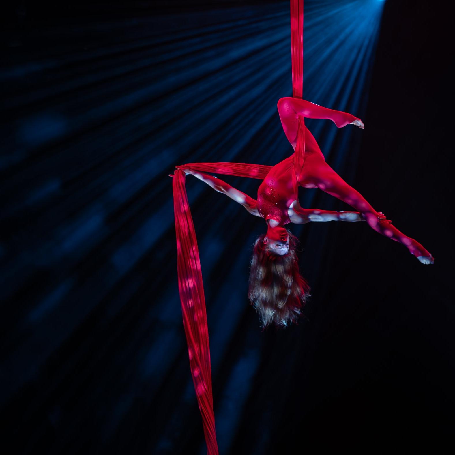 erika-lemay-aerial-silks.jpg