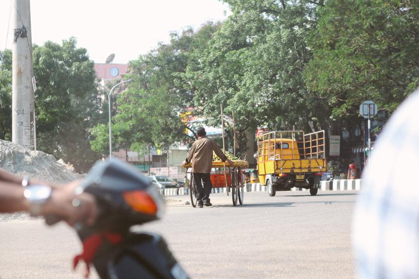 India2012WEB-621.jpg