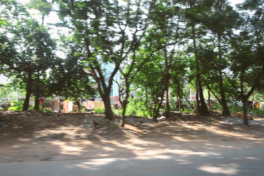 India2012WEB-622.jpg