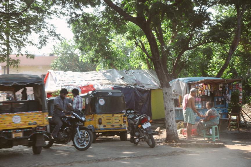 India2012WEB-623.jpg