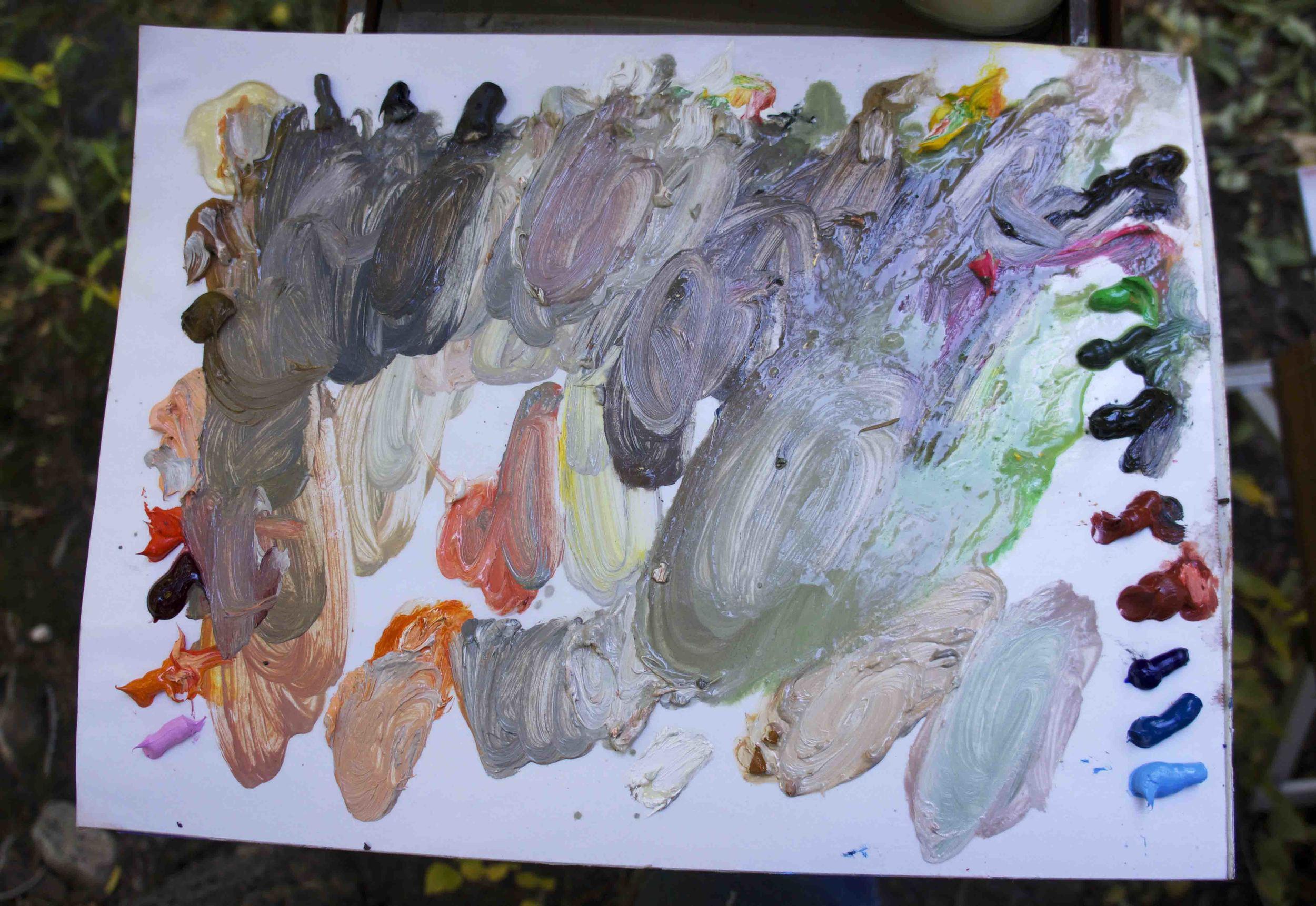 site-10.3.13 RAW-n. crestone creek palette.jpg