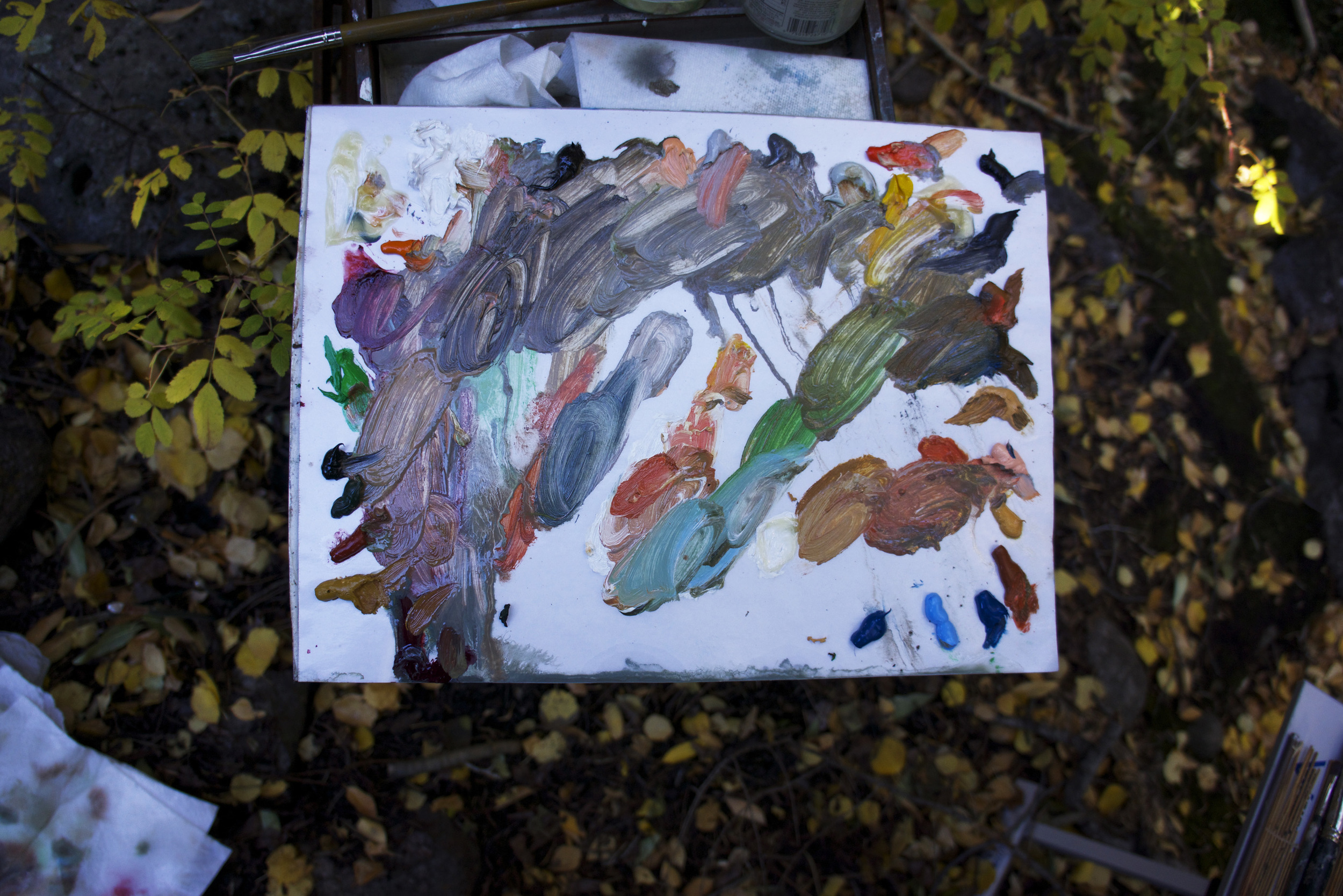 site-10.12.13 RAW- N. Crestone Creek-2-palette.jpg