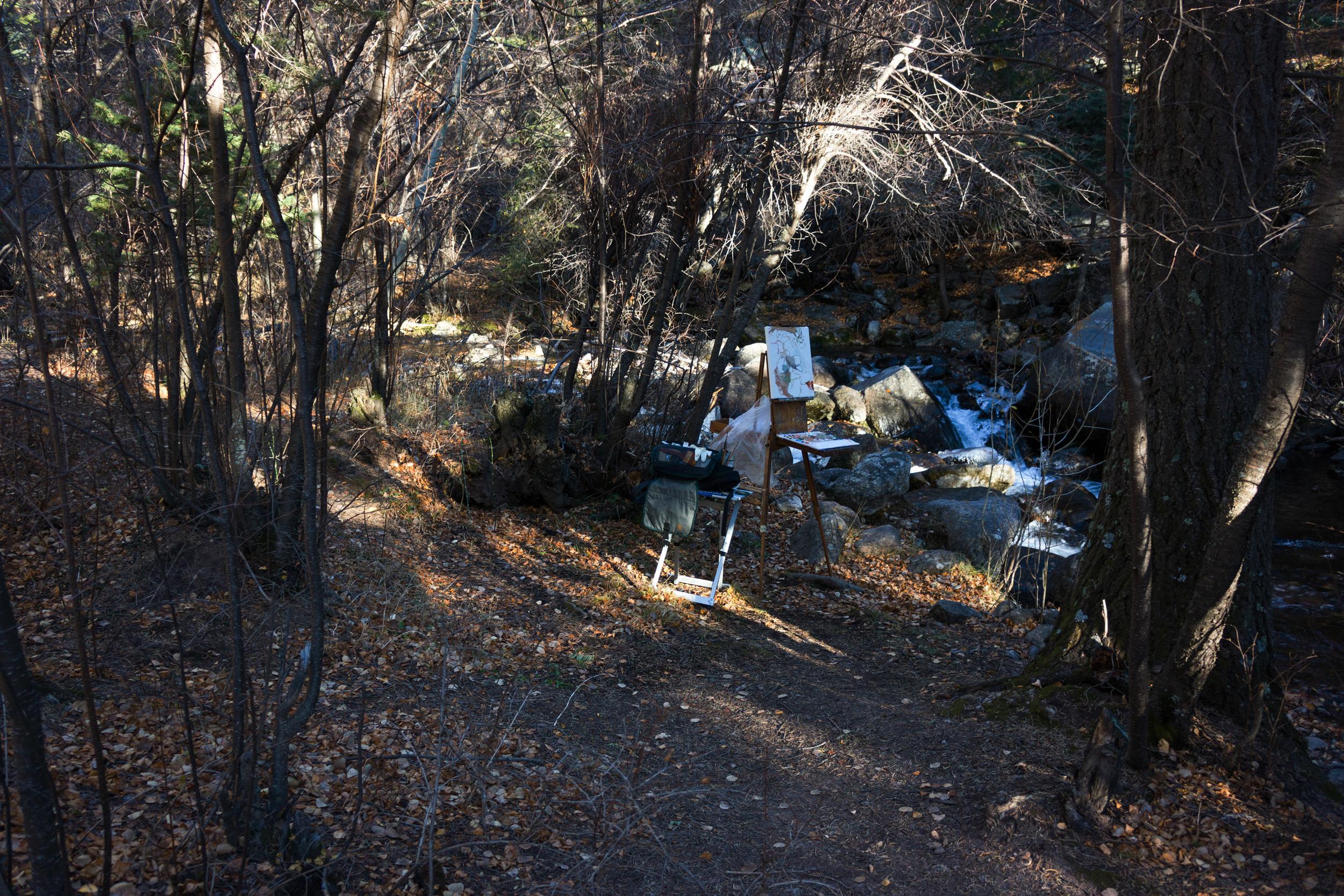 site-11.02.13 LR-RAW n. crestone creek scene 1 16x16.jpg