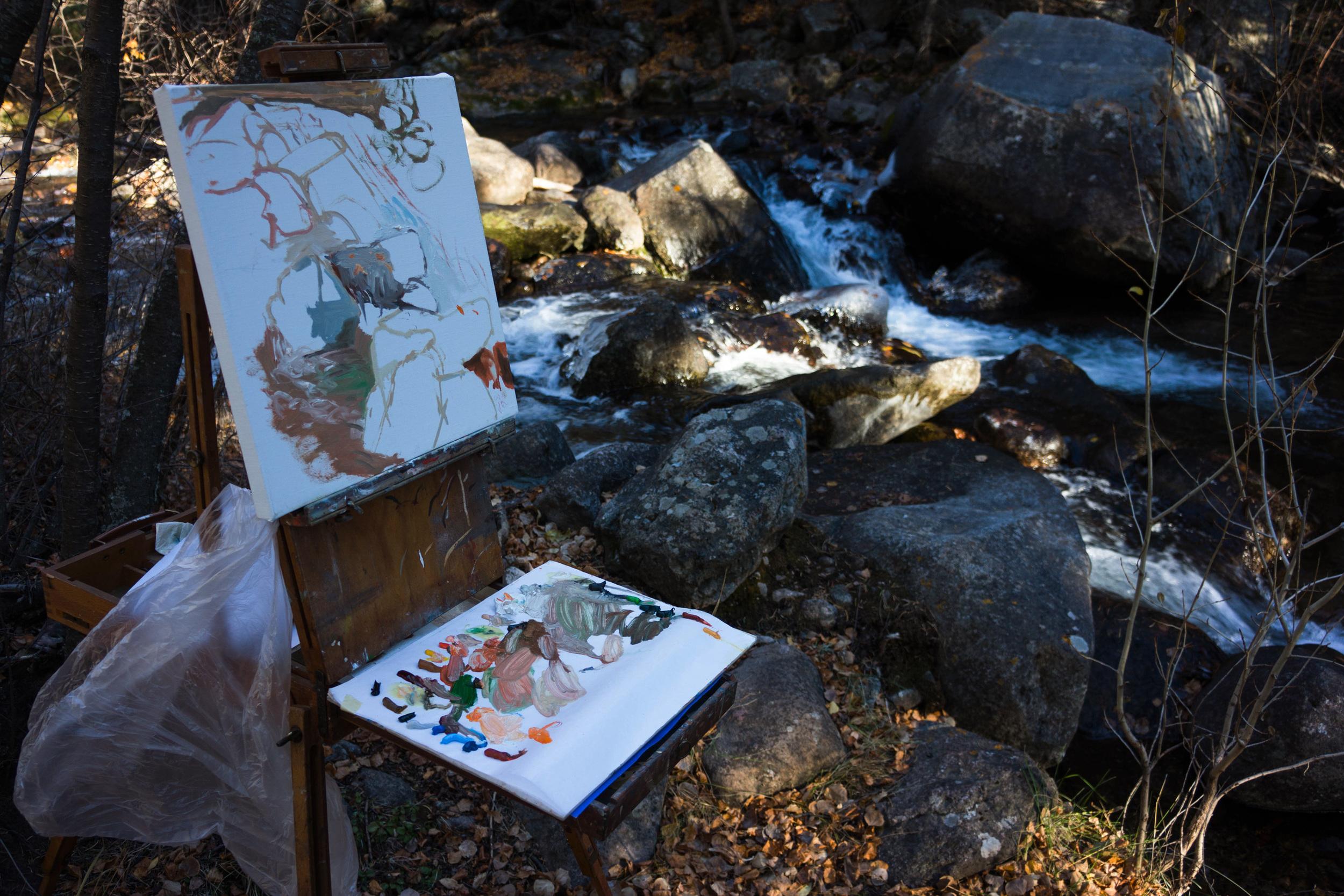 site-11.02.13 LR-RAW n. crestone creek scene 2 16x16.jpg