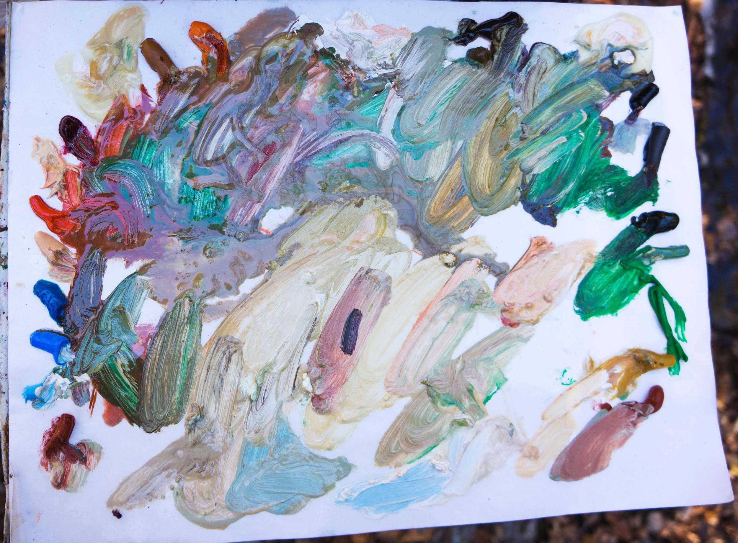 site-11-11-13 LR RAW n. crestone creek-palette.jpg