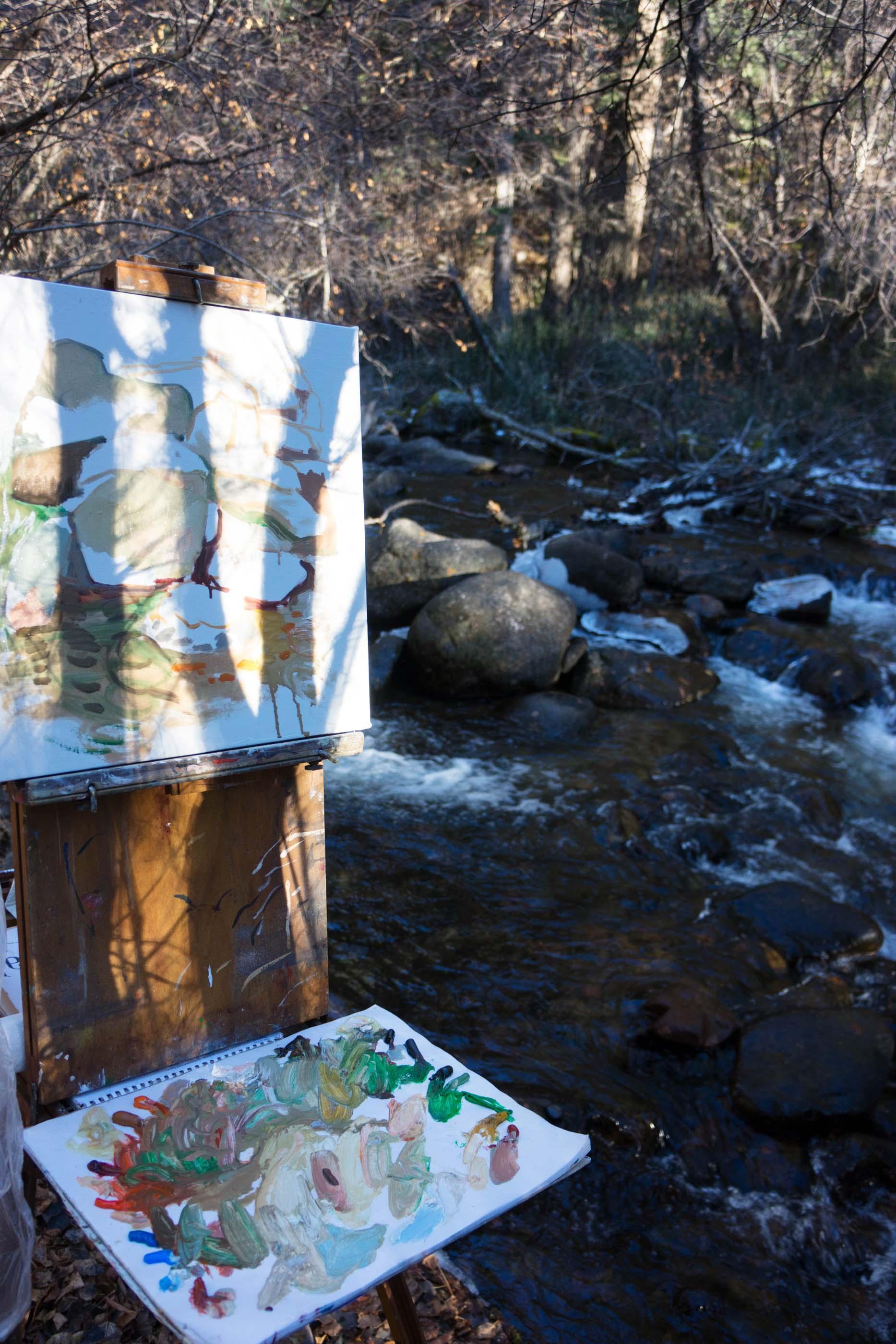 site-11-11-13 LR RAW n. crestone creek-scene.jpg