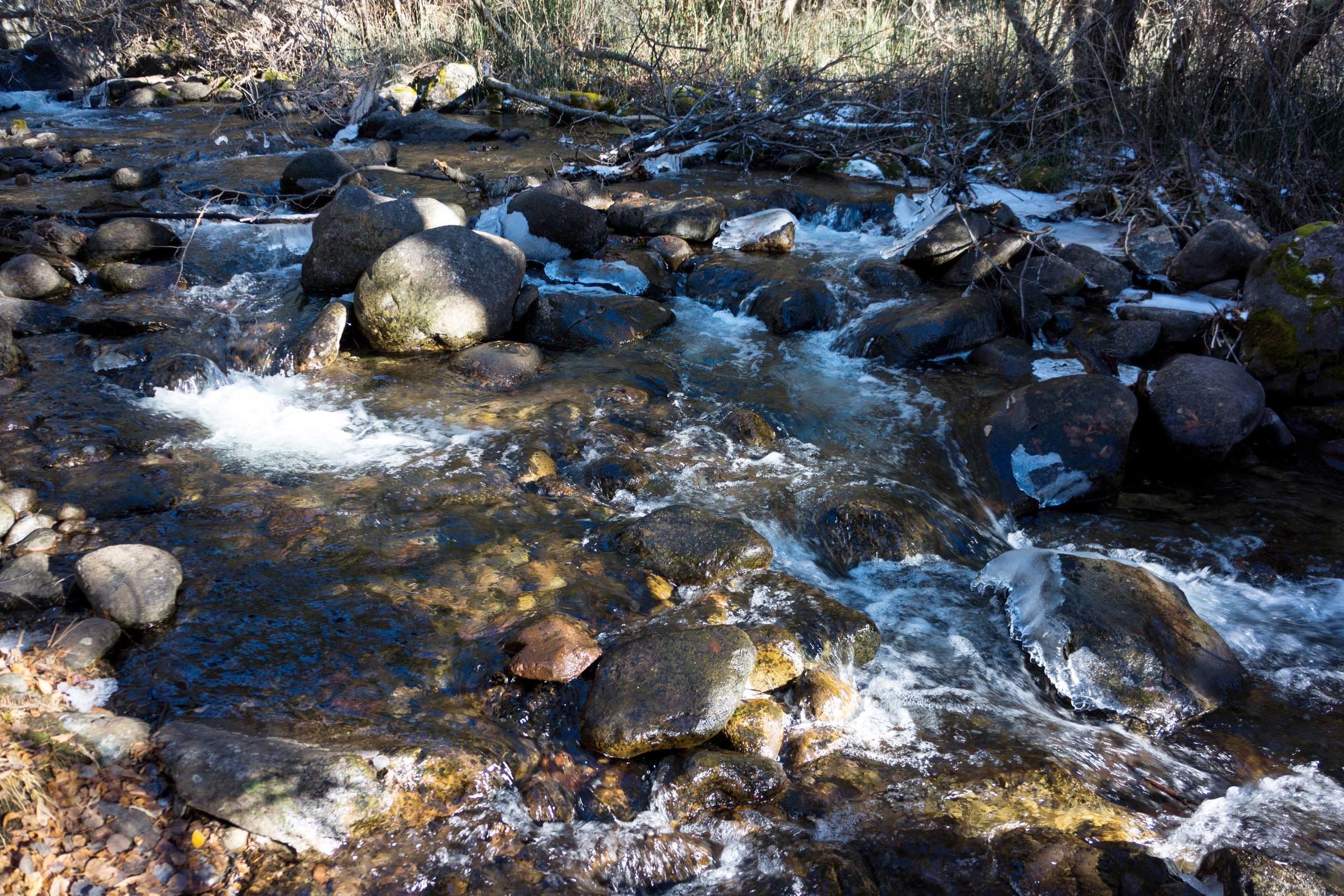 site-11-11-13 LR RAW n. crestone creek scene 2.jpg