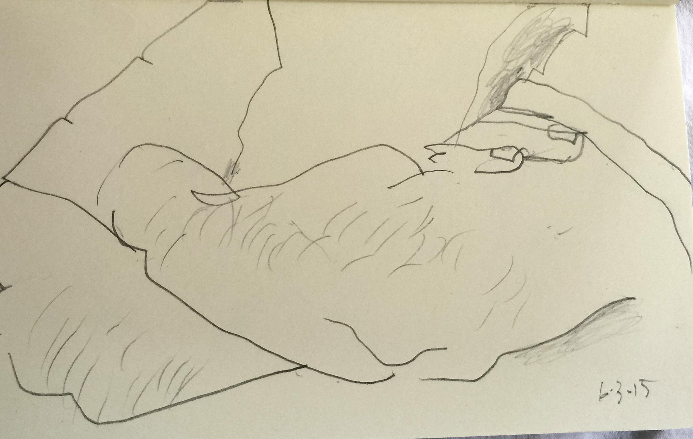 SITE-6-3-15 drawing.jpg
