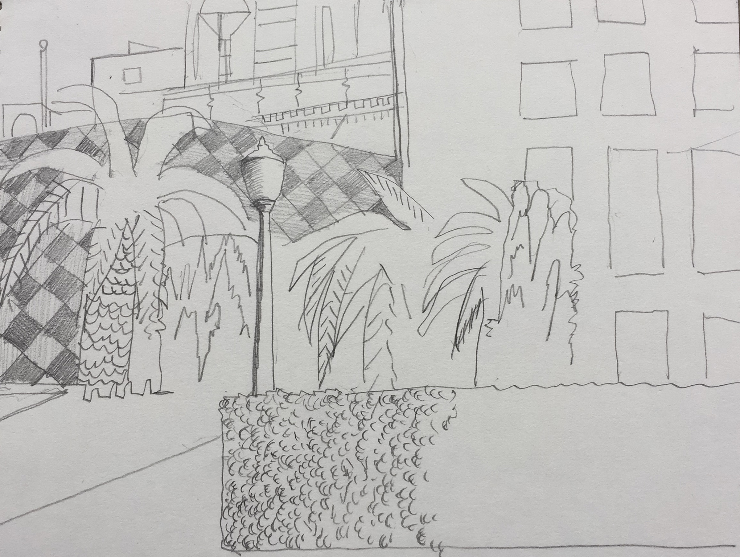SITE-drawing with palm trees.jpg