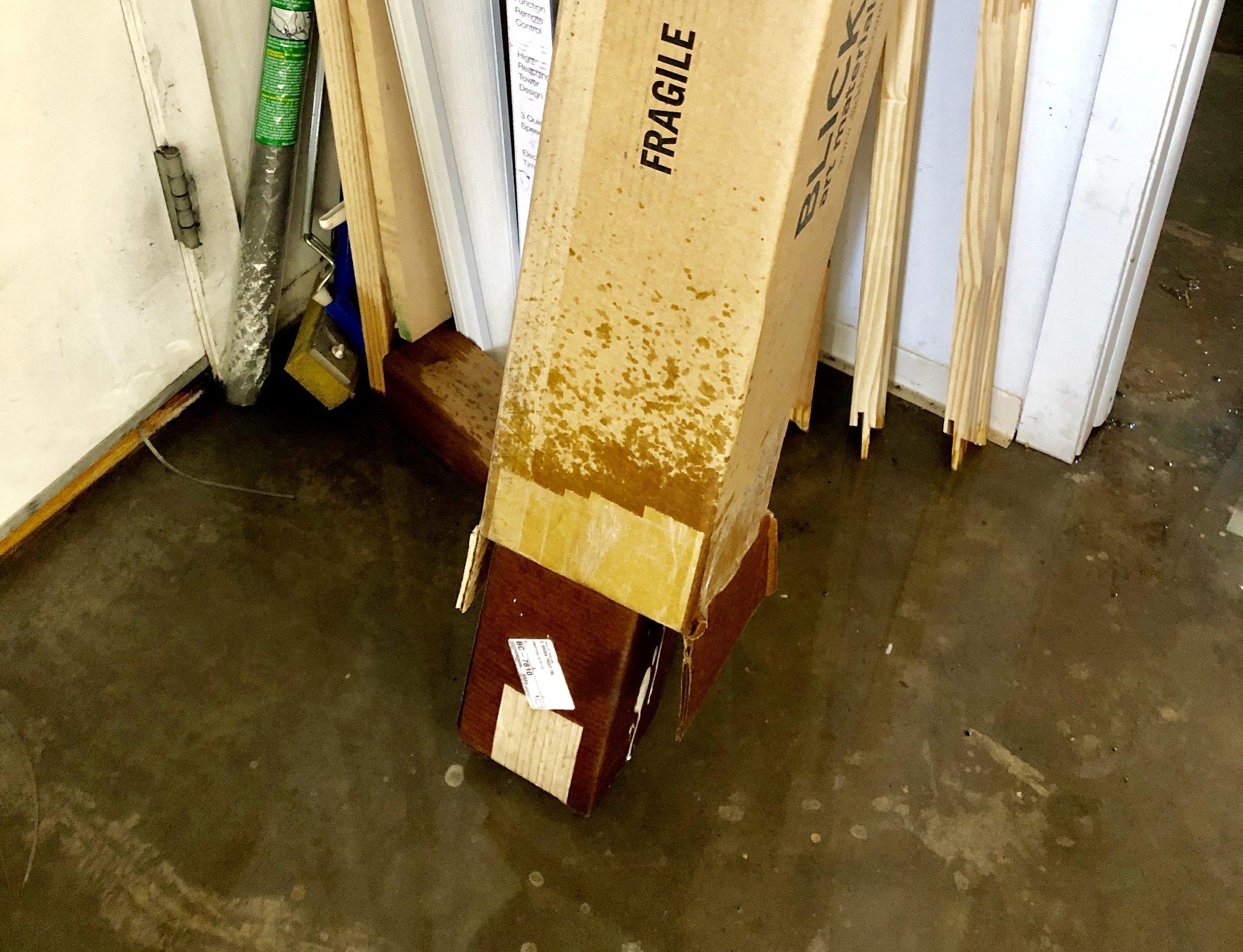 studio flood 4.jpg