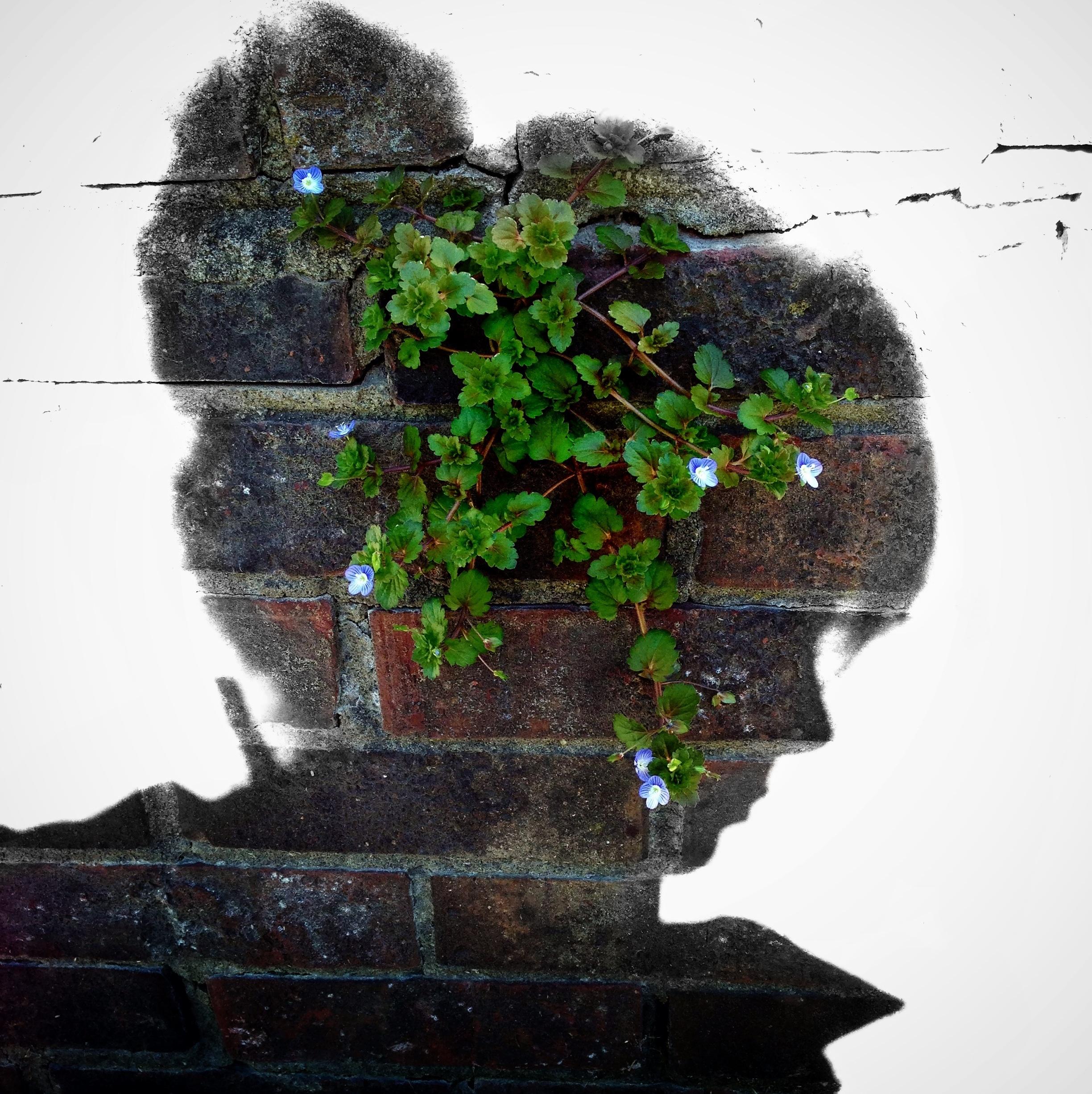 Jane Eyre 3: 'I Love Thornfield'