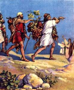 The spies carrying back fruit from the promise land (Num 13:23)